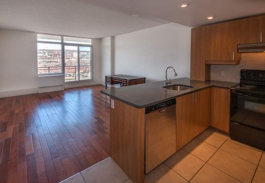 2700 Rufus-Rockhead Montreal for rent