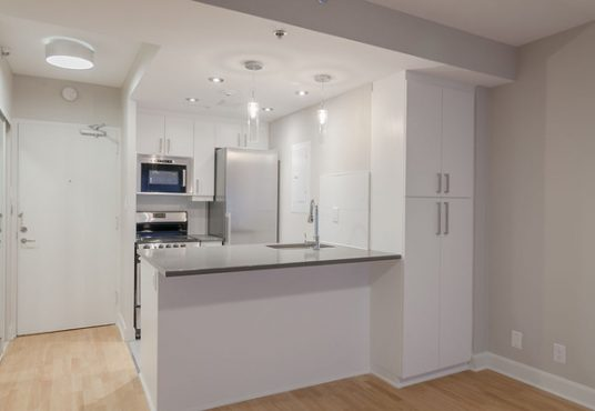 50046 0602 2018 02 Marketing Apartment Kitchen Landscape