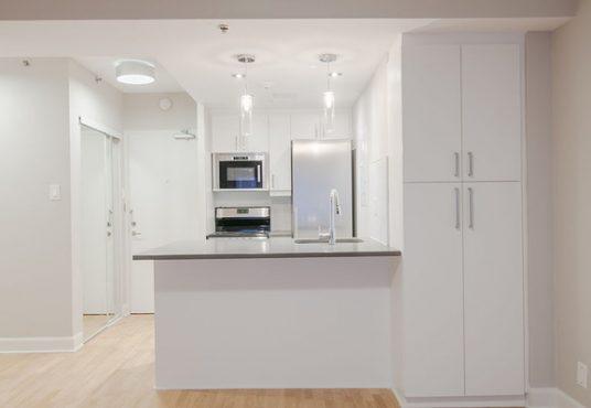50046 0602 2018 02 Marketing Apartment Kitchen Landscape 2