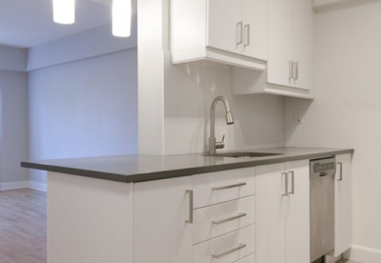 50046 0801 2018 02 Marketing Apartment Kitchen Portrait 2