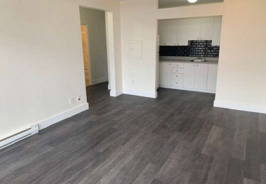 6325 Maurice-Duplessis Montreal Nord apartment for rent
