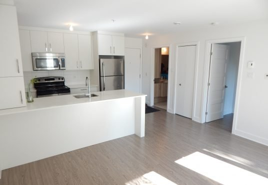 1-bedroom condo for rent at 2700 de Rouen Montreal