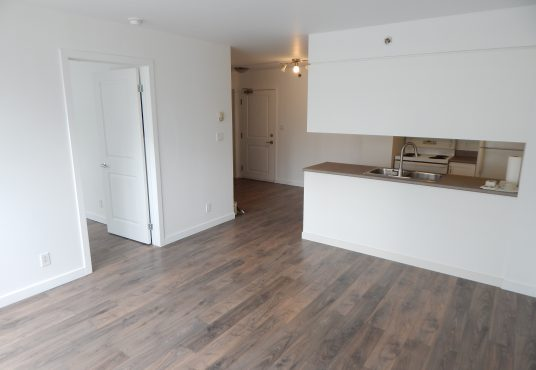 1225 Notre Dame Ouest - 1 bedroom condo for rent